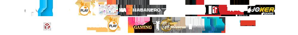 logo_providernew